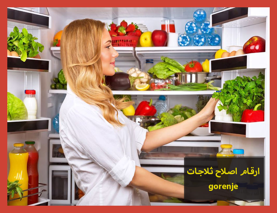 ارقام اصلاح ثلاجات gorenje | Gorenje Maintenance Center